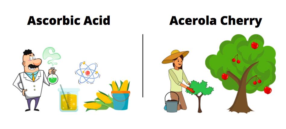 ascorbic acid vs acerola cherry